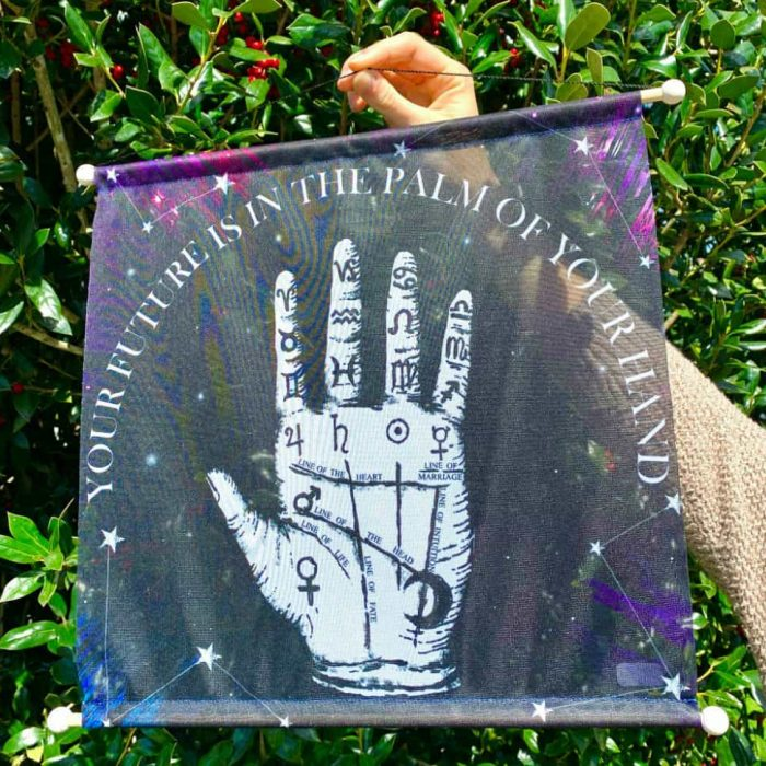 Your Future Is In The Palm Of Your Hand Palmistry Hanging Poster 14×15