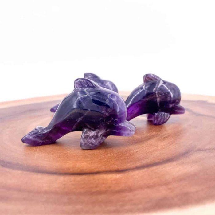 Dolphin Amethyst 25 W900 H900