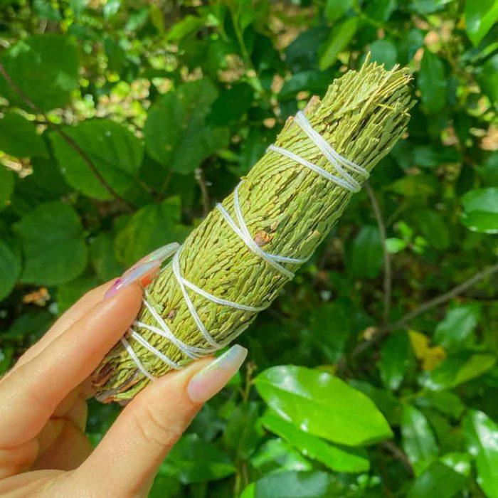 Cedar Smudge Stick Small