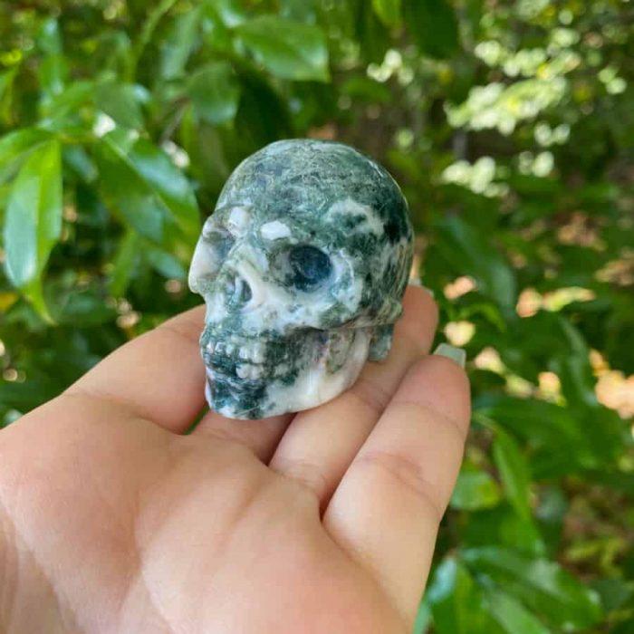 Skull Moss Agate  W900 H900