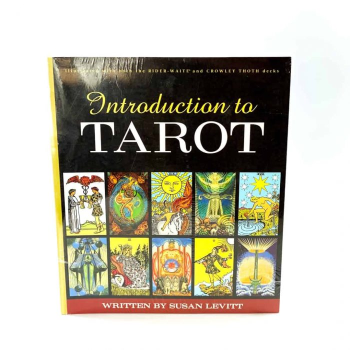 Introduction To Tarot Book Tallahassee Metaphysical Store Front View (2)